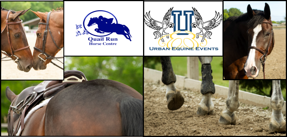 NHJSSC Show at Quail Run - May 4-5, 2019